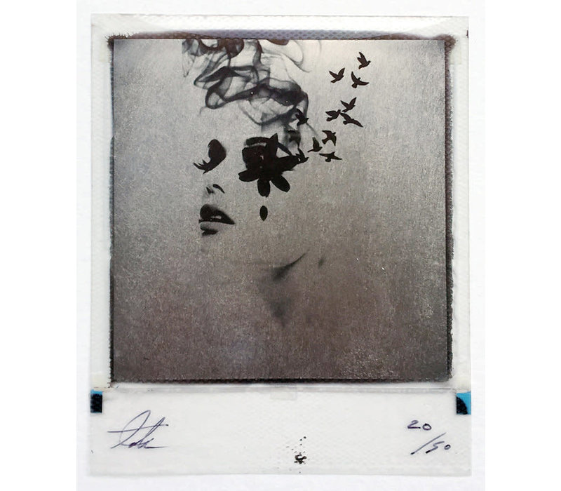 Smoke & Mirrors, Platinum polaroid