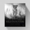 David Yarrow Wild Encounters - David Yarrow