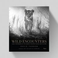 Wild Encounters - David Yarrow