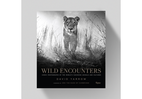 David Yarrow Wild Encounters - David Yarrow