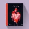 Fragile - Pedro Jarque Krebs