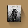 Lions - Laurent Baheux teNeues