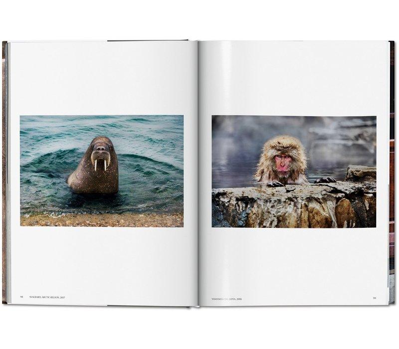 Steve McCurry - Animals