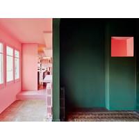 Who's afraid of pink, orange & green? (EN) -Colorful Living & Interiors