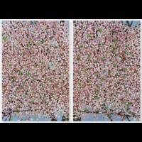 Damien Hirst - Cherry Blossom