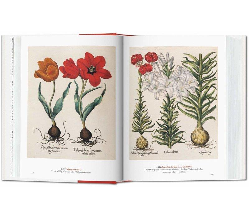 A Garden Eden - Masterpieces of Botanical Illustration