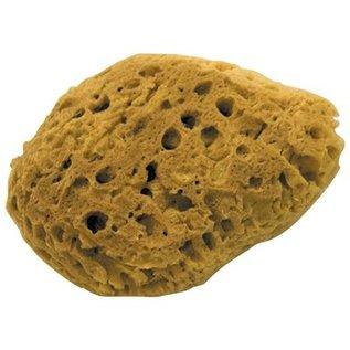 DEKOR Natural Coral Effect Sponge Small