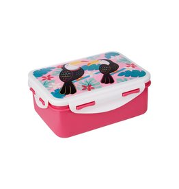 Sass&Belle Bentobox / lunchbox Rex London - Copy
