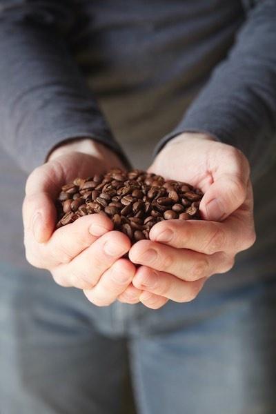 Het verschil in soorten koffie komt niet enkel tot uiting in de smaak maar ook in het uitzicht van de bonen: van klein tot groot, van licht getint tot bruin gebrand.