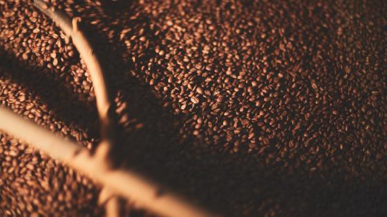 Koffie bewaren: hoe doe je dat?