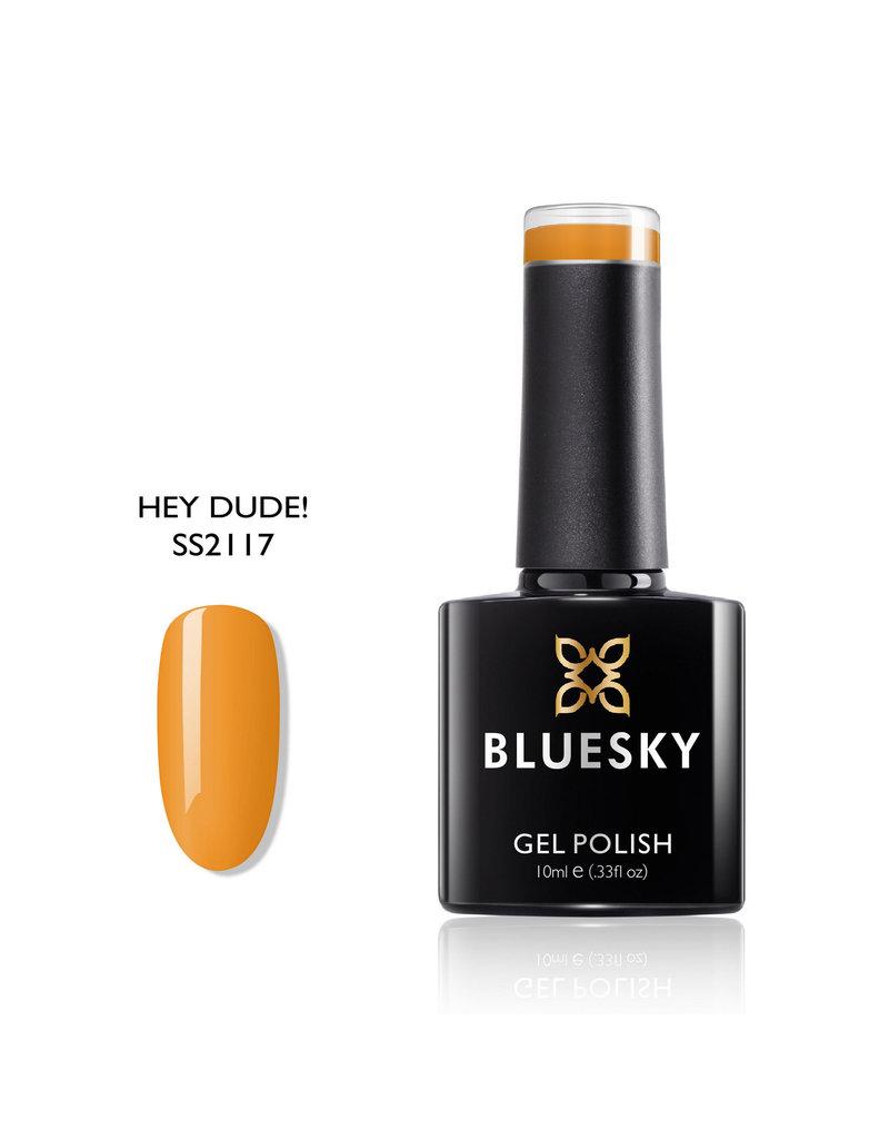 Bluesky SS2117