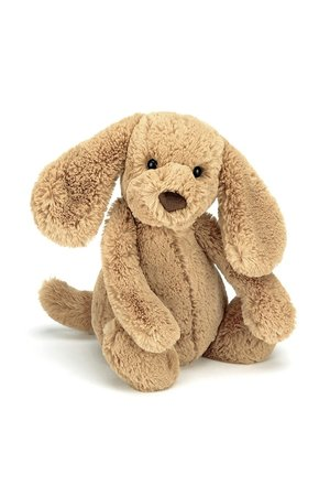 Jellycat Limited Bashful toffee puppy