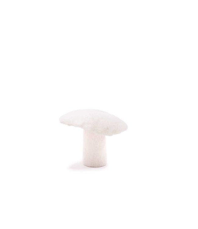 Mushroom - natural