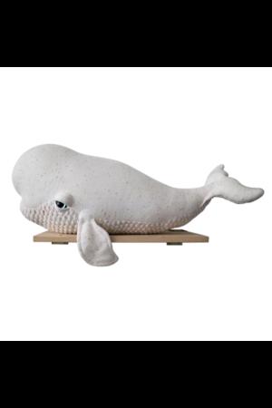 Big albino beluga