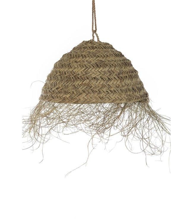 Seagrass suspension 'hemisphere'