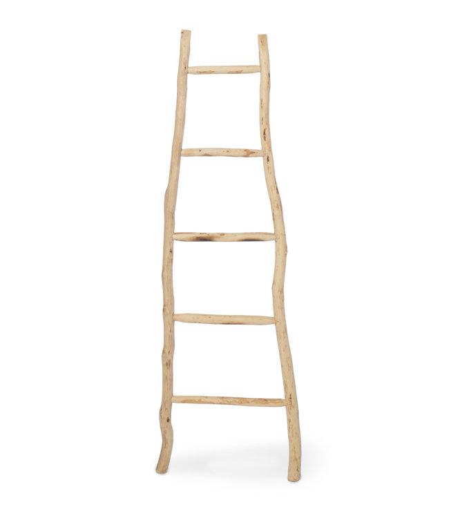 Olijfhouten ladder