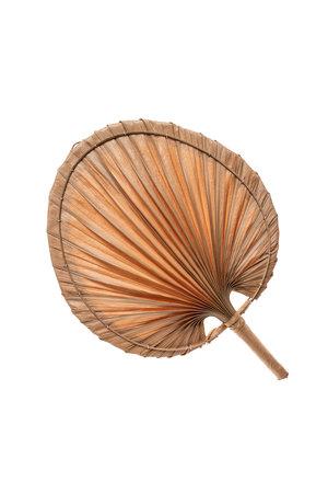 Decoratieve waaier palmblad S