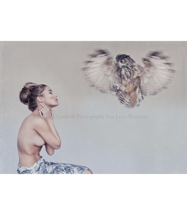Feathers - tyvek