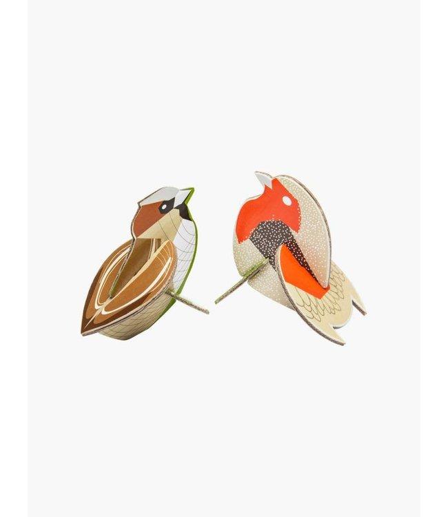 Pop out card - robin sparrow