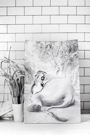 Love Warriors Craft paper photo bag - elephant #2