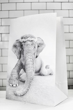 Love Warriors Craft paper photo bag  - elephant #1