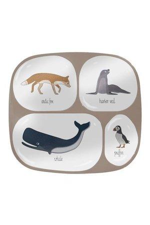Sebra Melamine plate w/4 rooms - arctic animals