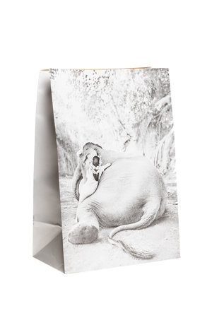 Love Warriors Craft paper photo bag - elephant #2