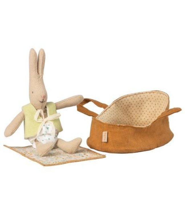Micro rabbit in carrycot