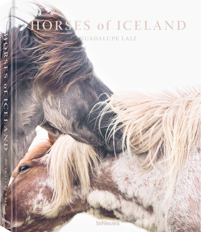 Horses of Iceland - Guadalupe Laiz