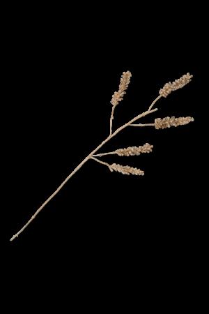 Planta decorative cereal 5-stem