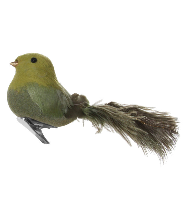 Bird with clip - ostrich tail green