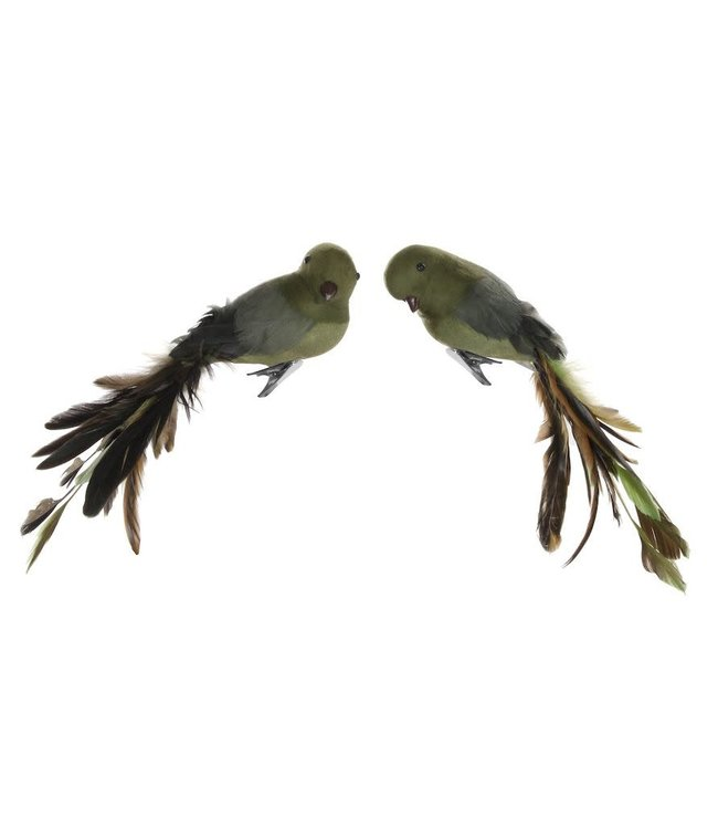 Vogel met clip - green/brown