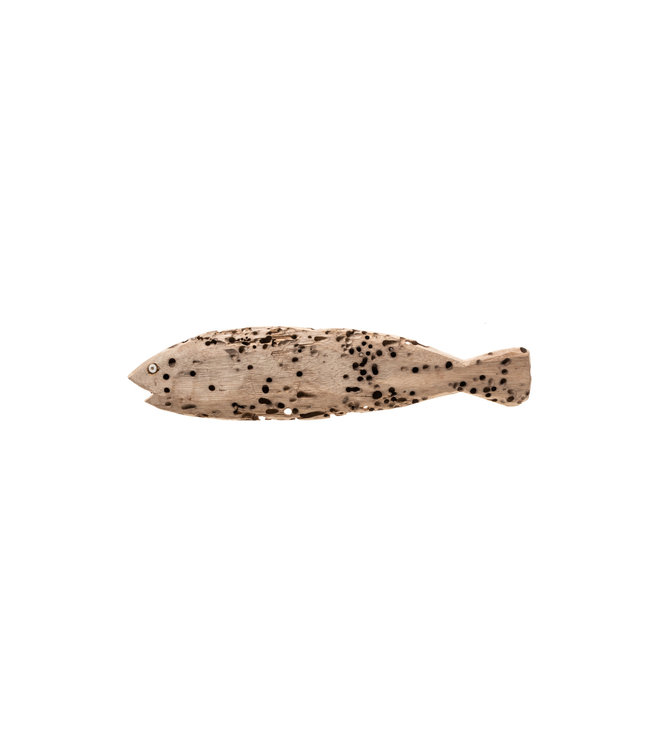 Recycled fish Lamu #93