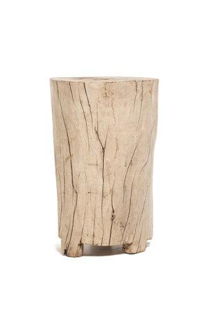 Tree trunk high #1