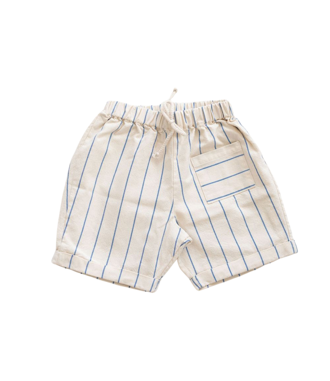 Pocket shorts - blue stripe