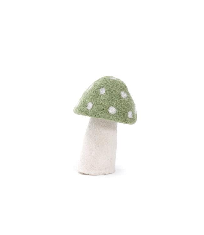 Muskhane Dotty - Vert tendre