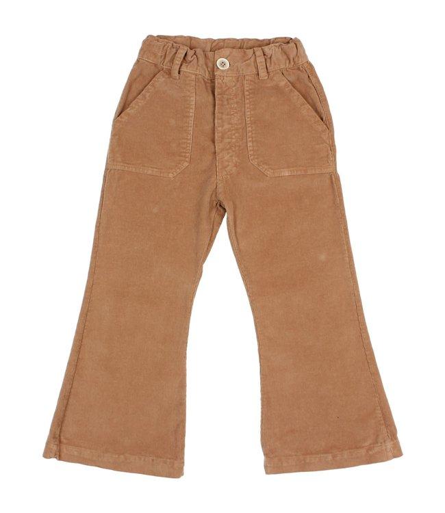 Flared velvet pants - muscade