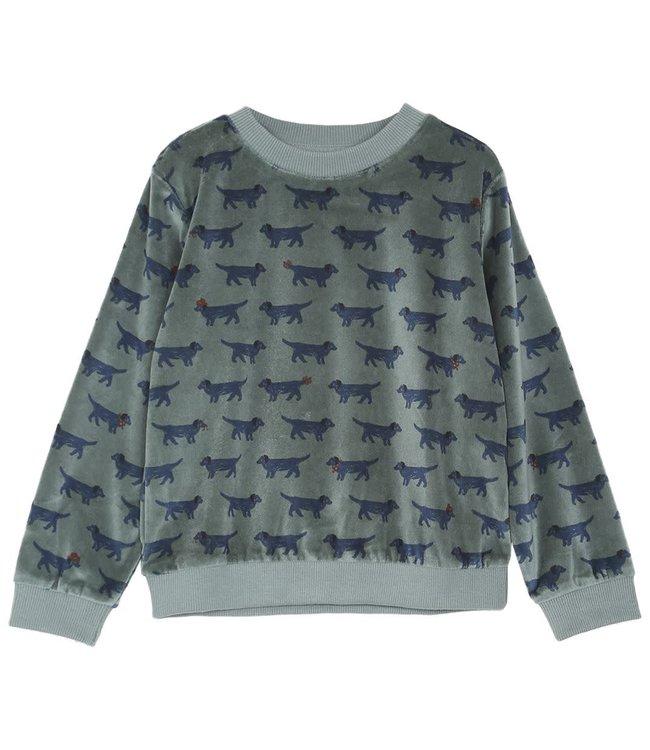 Sweatshirt - canard
