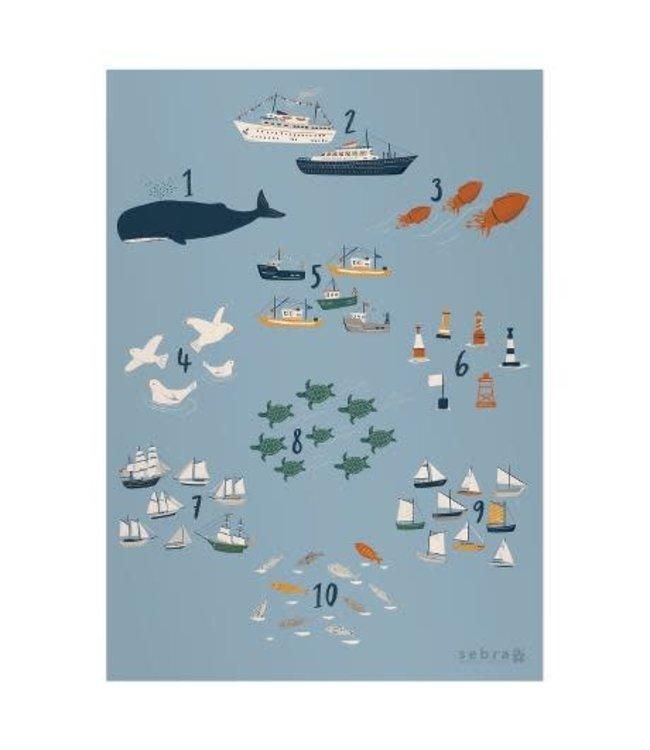 Sebra Poster numbers seven seas