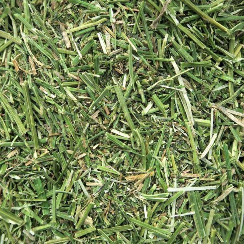 Semhof Bio Luzernehäcksel (Organic alfalfa Chopping) Single