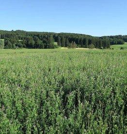 Semhof Bio Luzernepellets (Organic alfalfa Pellets) Topline