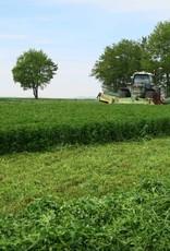 Semhof Bio Luzernepellets (Organic alfalfa Pellets) Turbo