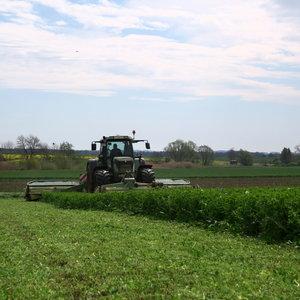 Semhof Bio Luzernehäcksel (Organic alfalfa Chop) Turbo