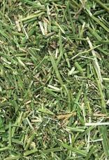 Semhof Bio Luzernehäcksel (Organic alfalfa Chop) Topline  - Copy