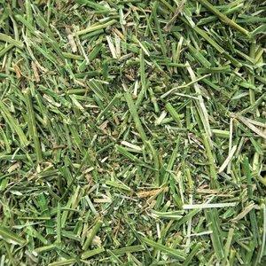 Semhof Bio  (Organic alfalfa Chop) Topline bale