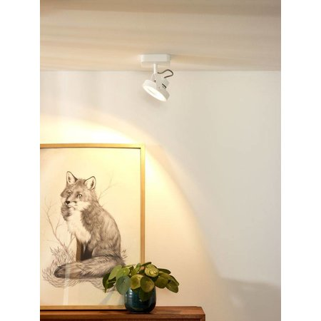 Lucide LED Opbouwspot Tala 31930/12/31