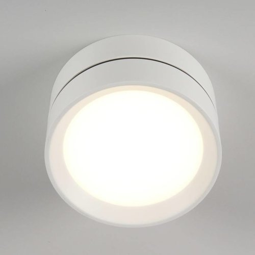 Absinthe LED Outdoor ceiling spot Luna L White IP54