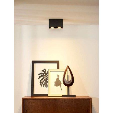 Lucide Design double ceiling spot Bodi