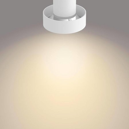 Philips LED wall / Ceiling spot myLiving Bukko 2-light