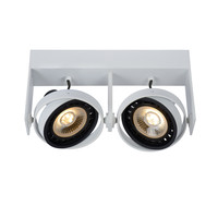 GRIFFON - Plafondspot - LED Dim to warm - GU10 - 2x12W 3000K/2200K - Wit